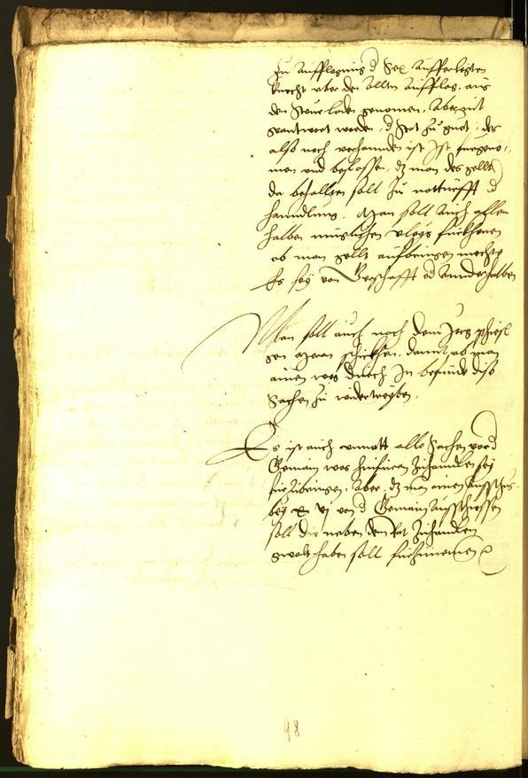 Civic Archives of Bozen-Bolzano - BOhisto Minutes of the council 1529