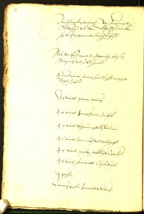 Civic Archives of Bozen-Bolzano - BOhisto Minutes of the council 1536