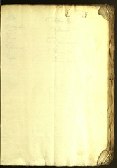 Civic Archives of Bozen-Bolzano - BOhisto Minutes of the council 1628/29 -