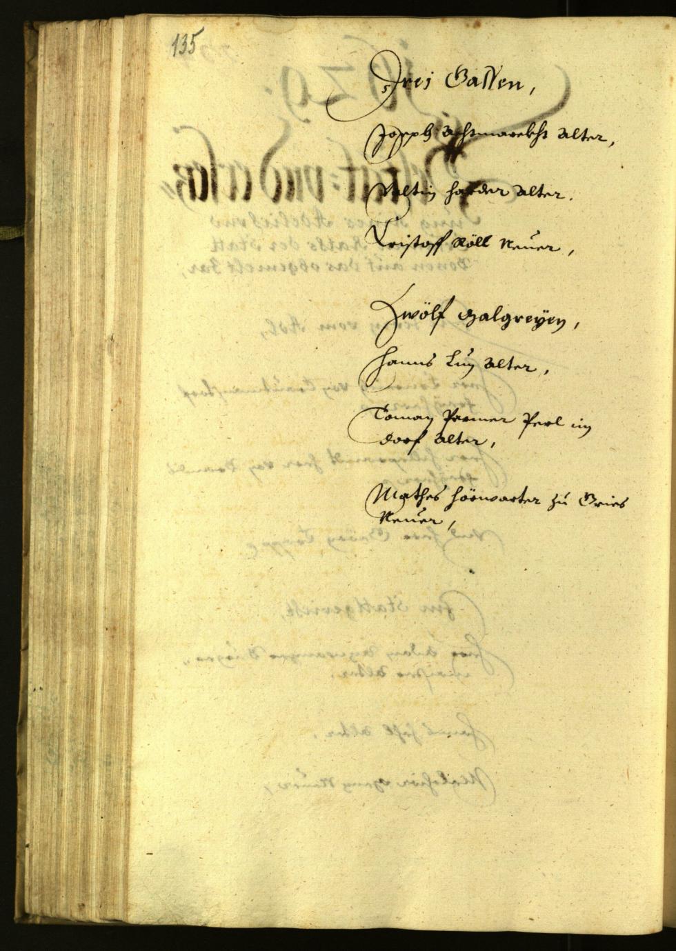 Civic Archives of Bozen-Bolzano - BOhisto Minutes of the council 1629