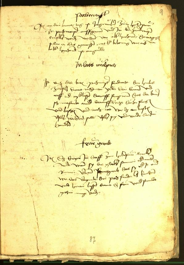 Civic Archives of Bozen-Bolzano - BOhisto Minutes of the council 1482